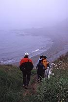Küste bei St.Bride's