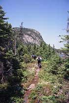 Mount Stamford