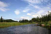 Am Sandy Pond