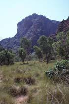 An der Bungle Bungle Range entlang