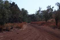 Der Spring Creek Track