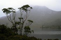 Cradle Mountain in den Regenwolken