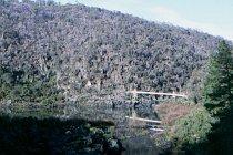 Alexandra Suspension Bridge und der First Basin See