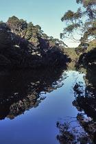Henty River