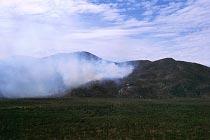 Bushfeuer am Mt Elephant