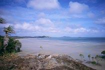 Frangipani Beach