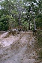Furt am Bertie Creek