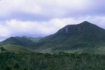 Mt Tozer