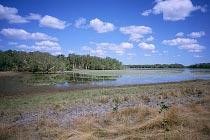 Low Lake