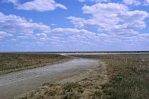 Nifold Plain