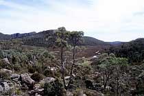 Zion Hill und Zion Vale
