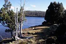 Lake Ball