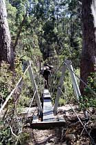 Hängebrücke über Cephissus Creek
