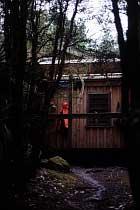 Pine Valley Hut