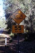 Wombat-Verkehrschild