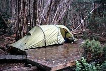 Zelt auf der Zeltplattform