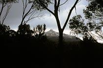 Mt Pelion East