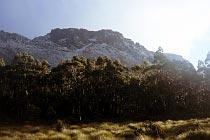 Mount Massif mit Schnee