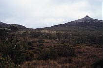 Pelion Gap und Mount Pelion East