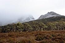 Mount Doris