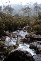 Wurragurra Creek