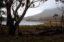 Lake Ayr