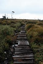 Overland Track