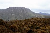 Mount Oakleigh