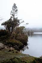 Am Ufer von Lake Windermere