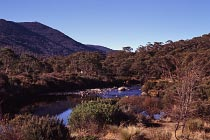 Am Thredbo River