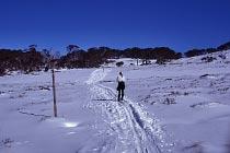 Gerade genug weisse Pracht zum Skilaufen