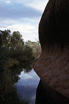 Wasser am Fuße des Uluru