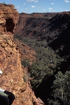 Kings Canyon von oben