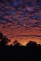 Feuerroter Himmel am Morgen
