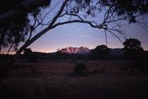 Mt. Sonder im Morgenlicht
