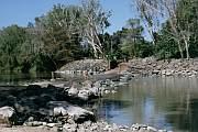 East Aligator River