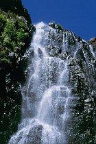 Twin Falls
