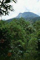 Blick auf Mt Demi